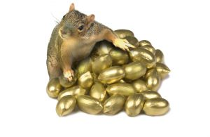 squirrel_with_golden_nuts