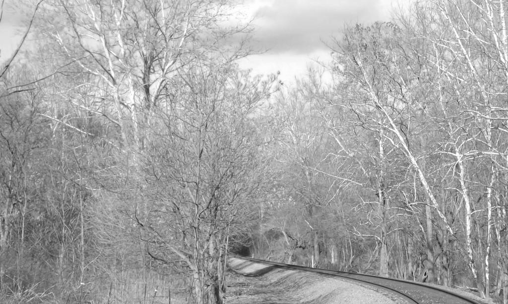 Tracks07